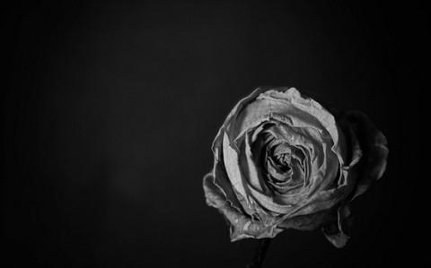 Rencontre black et white